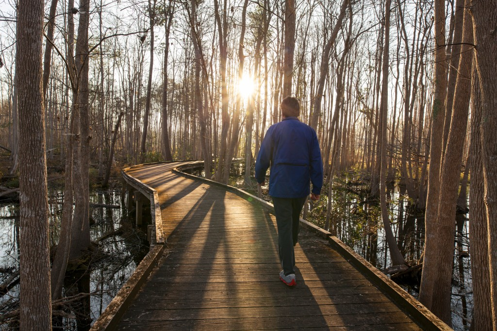 Man walking forest trail in early morning